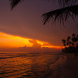 Beautiful tropical sunset — Stock Photo #12274868