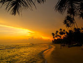 Beau coucher de soleil tropical — Photo