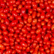 Roma Tomatoes - Stock Photo