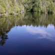 Stock Photo: Rockwood Reflections