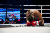 Muay Thai Way Kru — Foto Stock