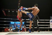 Thaiboxing — Foto Stock