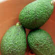 Avocados in Bowl — Stockfoto #11376861