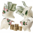 Broken Piggy Banks — Stock Photo #11733268