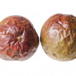 Passion Fruit — Foto de Stock
