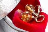 Earrings in gift box — Fotografia Stock