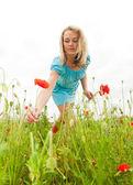 Woman picking flowers — Stock Photo