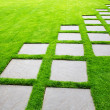 Large Pavers on Diagonal — Stock Photo