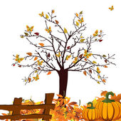 Autumn design — Stockvektor