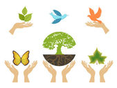 Nature Icons with hands. Vector set — Stock Vector