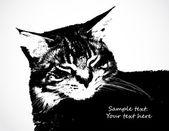 Black cat. Vector — Stock Vector