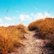 Royalty-Free Stock Photo: Path in the sky