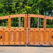 Stock Photo: Security Gate