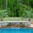 Pool Water Feature — Stock Photo #11253770