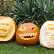 Halloween pumpkins — Stock Photo #11639269