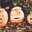 Halloween pumpkins — Stock Photo #11640572