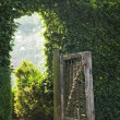 Stock Photo: Old gate
