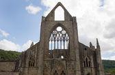 TIntern Abbey Wales — Stock Photo