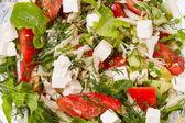 Fresh salad with mozarella — Stock Photo