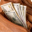 Dollars in the women's handbag - Stock fotografie