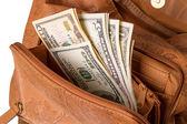 Dolarów w torebki damskie — Zdjęcie stockowe