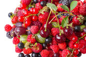 Heap different berries — Stock Photo