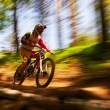 Extreme mountain bike competition - Foto de Stock