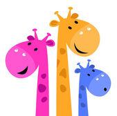 Beyaz izole renkli zürafa ailesi — Stok Vektör