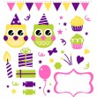 Owl birthday party design elements isolated on white — Stock Vector
