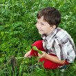 Стоковое фото: Boy fed rabbits in garden