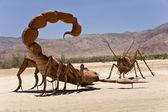 Desert Stand Off — Stock Photo
