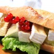 Stock Photo: Cheese sub sandwich