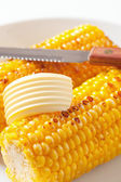 Roasted corn on the cob — Stock Photo