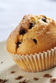 Chocolate chip muffin — Stockfoto