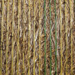 Straw bale close up — Foto Stock