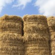 Straw bale and summer sky background — Stock Photo