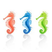 Set of Vector Seahorses — Stock Vector