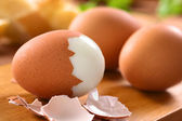 Hard Boiled Eggs — Stock Photo