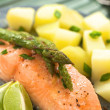 Baked Salmon with Asparagus — Stock Photo #11913619