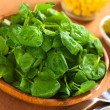 Fresh Watercress — Stock Photo #11948599