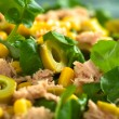Tuna Sweetcorn and Olive Salad — Stock Photo #11948727
