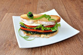 Sandwich with eggplant, tomatoes — Stock Photo