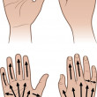 Woman, man hands with massaging lines — Stock Vector