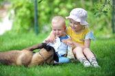 дети и собаки — Стоковое фото