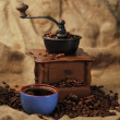 Manual coffee grinder — Foto Stock