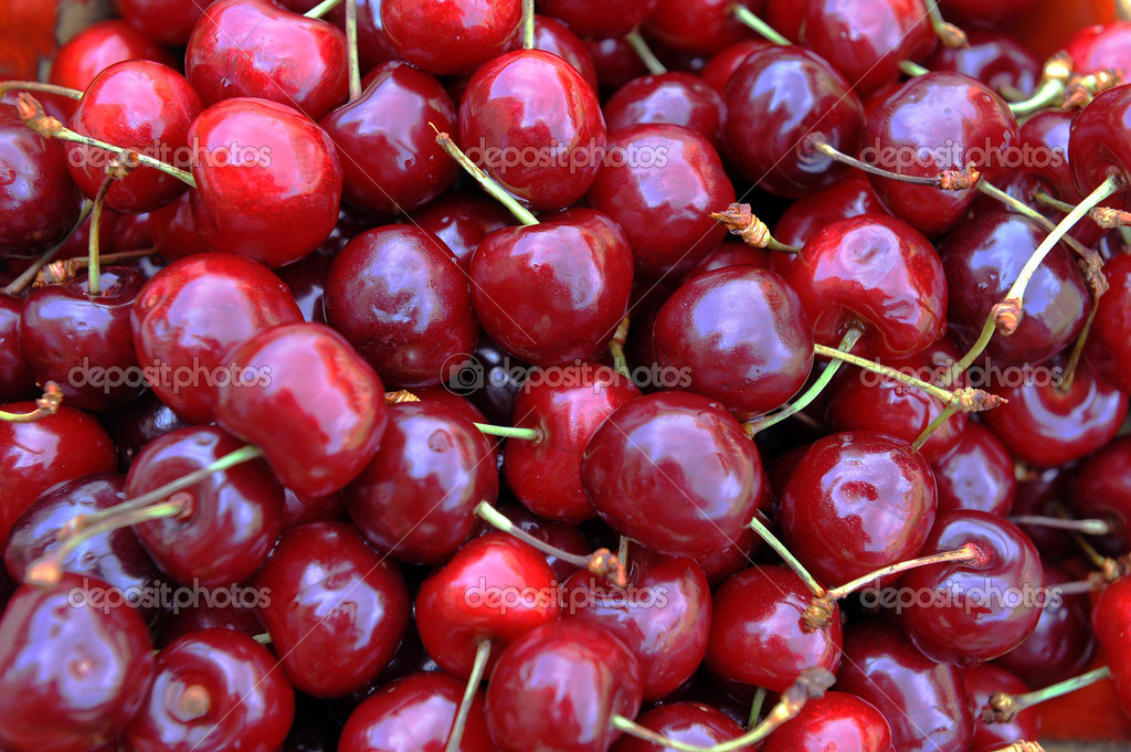 Freshly picked heap of sweet  cherries — Stock Photo #11905366