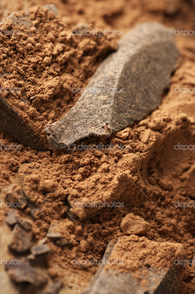 Chocolate ingredients: cocoa solids and cocoa powder close-up.  Stock Photo #11211660