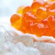 Salmon caviar in shell — Stockfoto