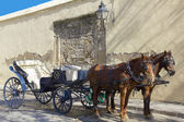 Horse carriage — Stockfoto
