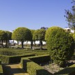 Gardens of the alcazar in Cordoba — Stock Photo